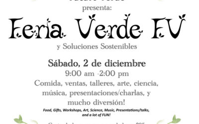 Sustainable Solutions Fair